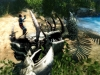 Risen 2 Screenshot 19