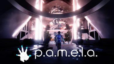 P.A.M.E.L.A.